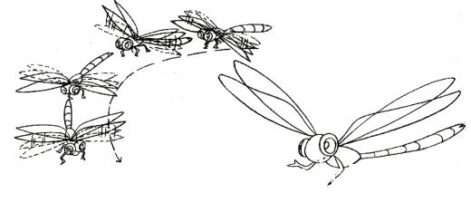 蜻蜓1.png